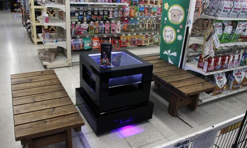 2018年2月3日 チェーン店舗かねだい八千代 レクタングラ販売開始