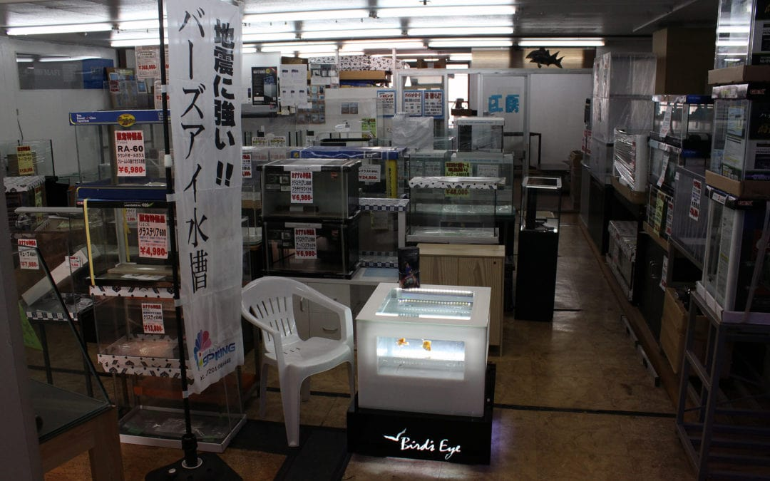 日本有数の規模を誇るピーデー レクタングラ販売開始