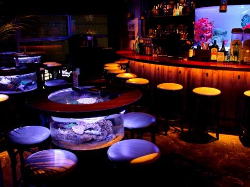神戸bar shark まるで別世界のようだ