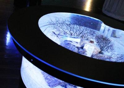 東京にあるマクセルアクアパーク品川のコーラルカフェバーに設置されたバーズアイ水槽