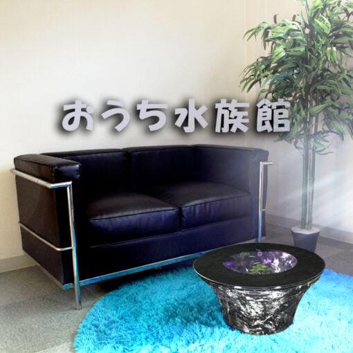 おうち水族館 逆さ富士 FUJI50 ギャラクシーブラック 淡水飼育セット